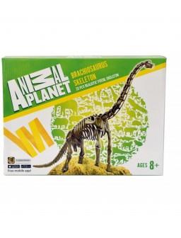 Art Planet Esqueleto...