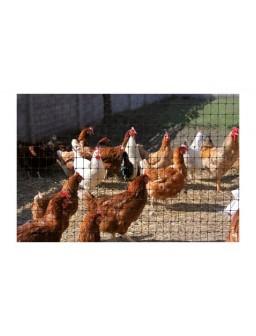 Malla plast aviar cintoflex...