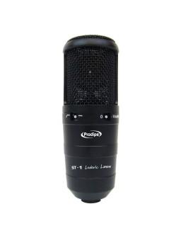 Micrófono de estudio...